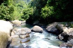 Khao Sok National Park: river