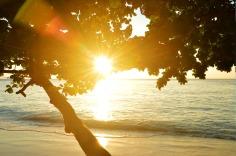 Similan Islands: Ko Miang - sunrise, small beach